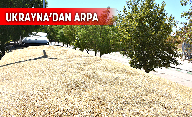 BESİCİLERE İTHAL ARPA